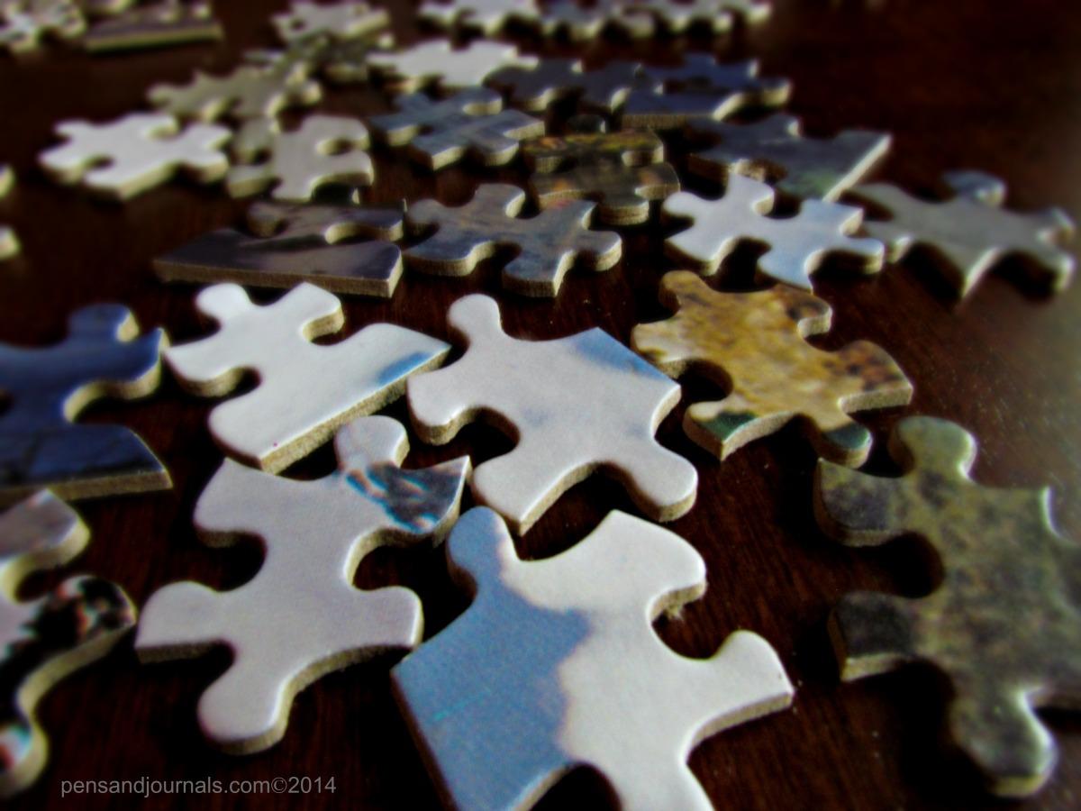 puzzle pieceswdp - Copy