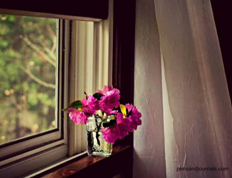 window sil 2 - Copy wdp