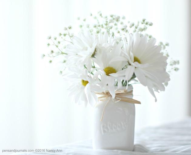 daisies 2 wdp