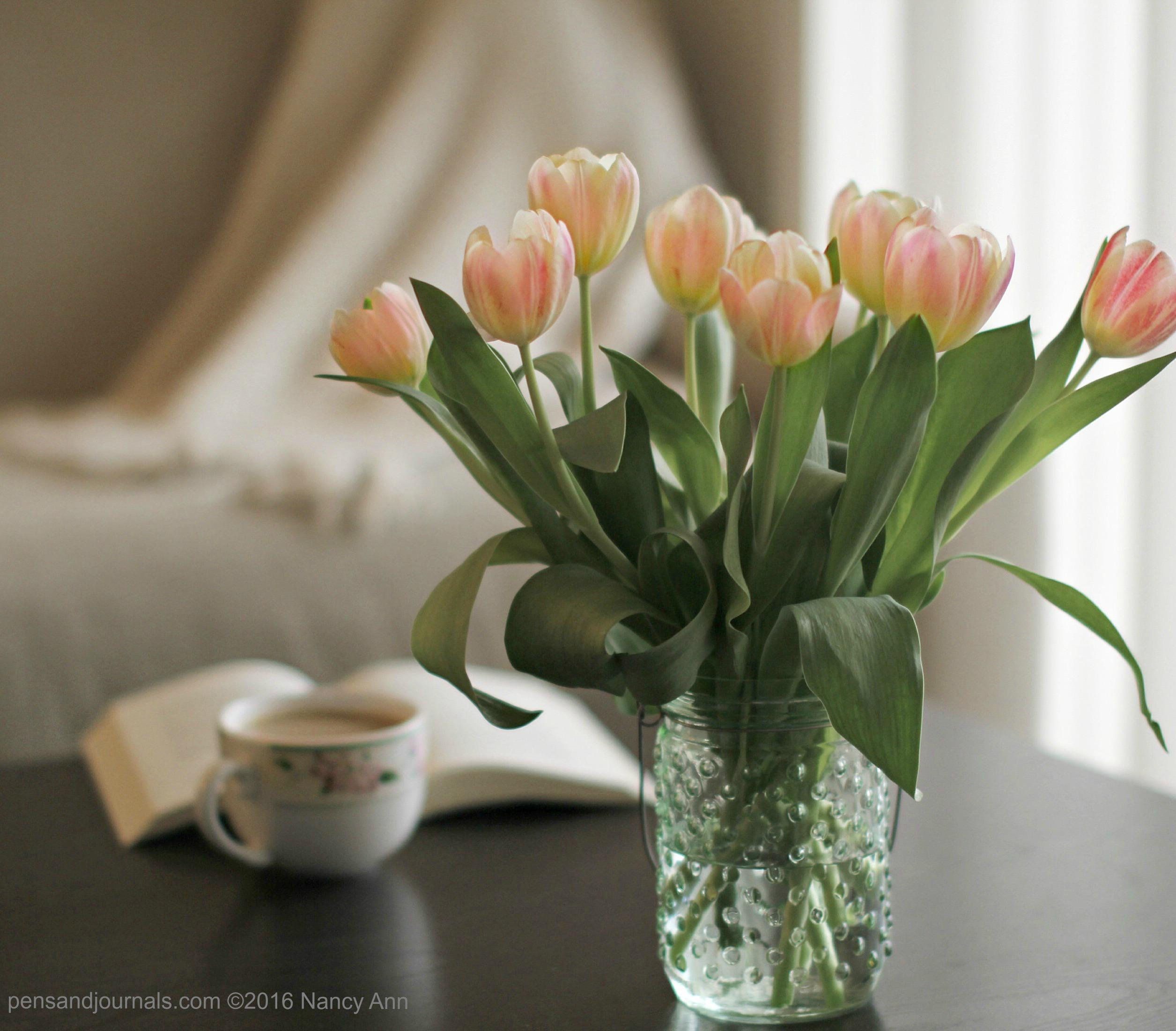 tulips 2 wdp