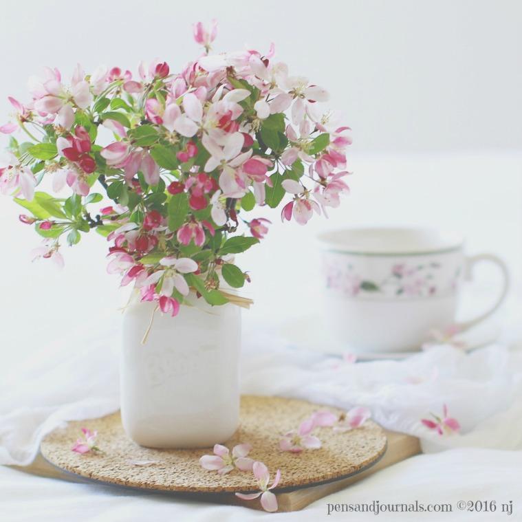 crabapple in vase wdp